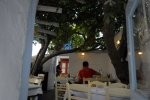 Kounelas - Mykonos Tavern serving dinner